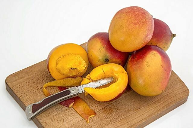 「果物を着る」フルーツレザーという最高の素材 - 海外ヴィーガンニュース